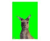 KE Design Tea Towel Kangaroo Green