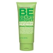 Formula 10.0.6 Be Berry Bright Exfoliating Mud Mask 100ml