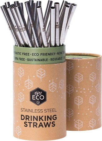 Ever Eco Stainless Streel Straight Straw Single