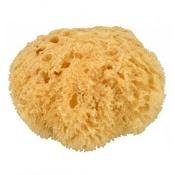 Natural Sea Sponge 7.5cm