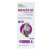 Bravecto Spot-On Cat Purple  6.25 - 12.5kg 500mg