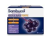 Sambucol Cold & Flu Forte 24 Capsules