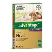 Advantage Cats Over 4kg Large Purple 4 Pack